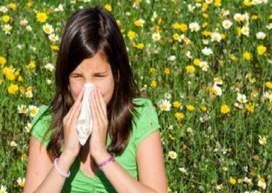 Allergia ai pollini? Alcuni consigli su come prevenire