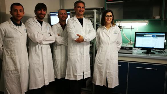 Uno studio di un professore dell'Unipr finisce sulla rivista Scientific Reports