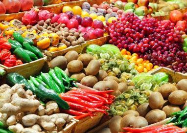 Emilia Romagna, dal 1994 perso il 43% dei frutteti