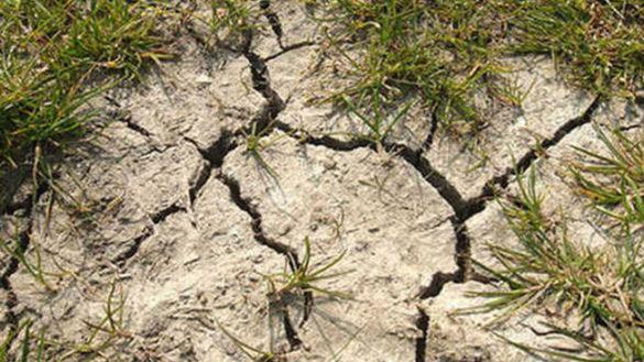 Siccità: inverno con -40% pioggia in Emilia Romagna, è allarme
