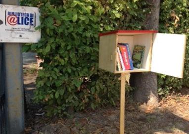 I libri abitano il Parco Ducale: torna il Bookcrossing