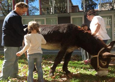 La pet therapy nei giardini dell'Ospedale Maggiore