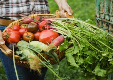 Agroalimentare E-R: 2017 da record per l'agricoltura. Parma prima nell'export