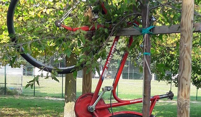 """Un parcheggio """"curioso"""" al Parco Martini"""