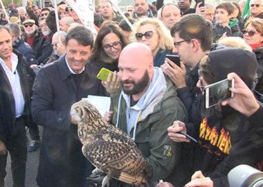 Renzi scende dal treno a Parma, ad accoglierlo un gufo