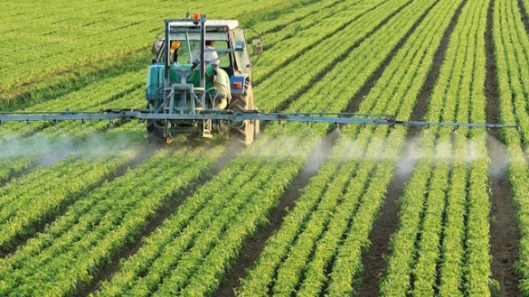 "Pesticidi, Legambiente Emilia Romagna lancia allarme: ""Limiti superati"""