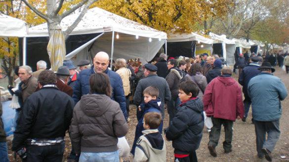 "November Porc a Polesine? Vai alla ""voce"" suggestioni"