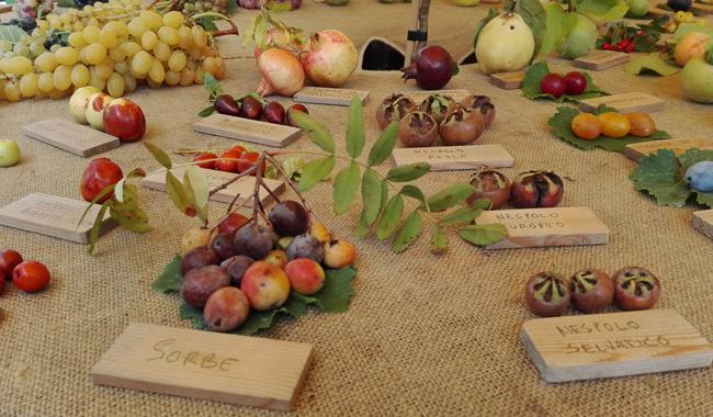Frutti dimenticati del parmense, se ne parla al Rural Market