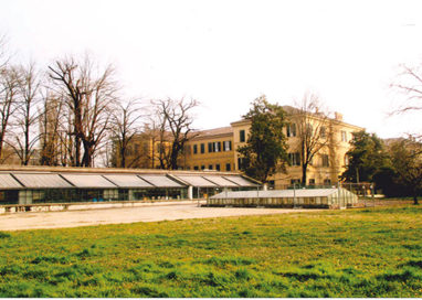 Serra del Giardino Ducale in mostra la Violette di Parma!