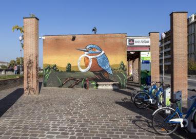 Parma street view, gli artisti colorano i muri di Parma