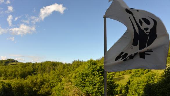Il 20 maggio celebriamo la biodiversità nelle Oasi WWF