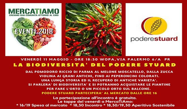 La Biodiversità del Podere Stuard al WoPa di via Palermo