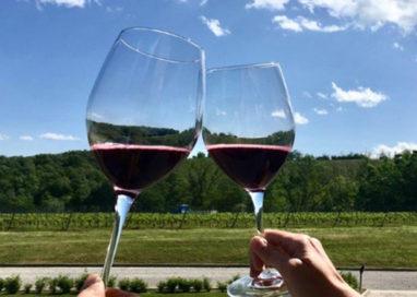 Cantine Aperte lancia il gusto di Parma a Monte delle Vigne