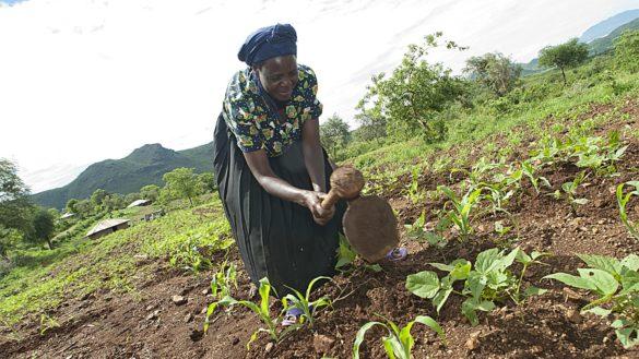 Fondazione Cariparma: tre anni di impegno per il Burkina Faso
