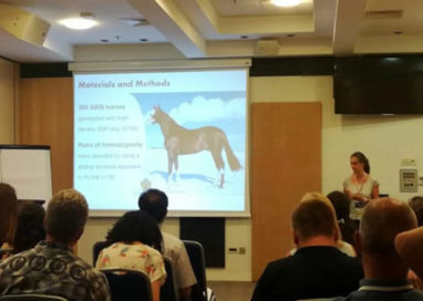 "Medicina Veterinaria: a una dottoranda Unipr il ""Best presentation Horse Commission 2018 Award"""