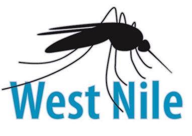Bollettino Virus West Nile, finora tre casi a Parma