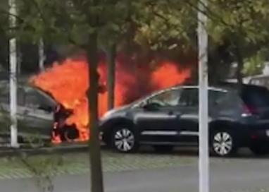 Collecchio, attimi di panico alla Parmalat: auto in fiamme