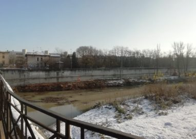 """Legambiente denuncia: """"Devastata l'ex area di riequilibrio nella Parma"""""""