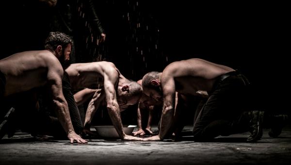 Settimana Teatrale a Parma - dal 21 al 27 gennaio