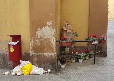"""""""Un bell'angolo di Parma e l'inciviltà delle persone"""""""