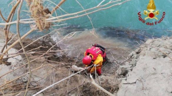 Viarolo, cane scivola nel fiume Taro. Salvato dai Vigili del Fuoco