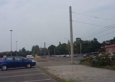 Abbattimento pioppi in viale Villetta, Pizzarotti spiega le motivazioni