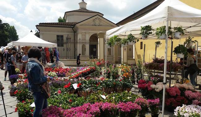 Doppio appuntamento per domenica: la Festa dei Fiori e il Mercato del Consorzio