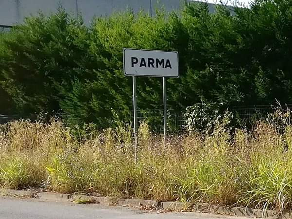 """Parma nascosta: """"Insegne di inizio città non visibili"""". TUTTE LE FOTO"""