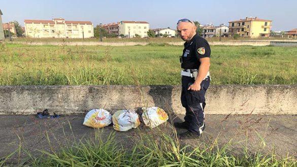 Busseto: abbandonava rifiuti per strada, scoperto colpevole